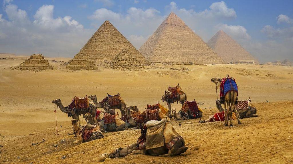 Iklim Negara Mesir dan Letak Geografisnya, Siswa Perlu Tahu nih