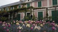 Bak Lukisan, Begini Pesona Kebun Claude Monet di Paris