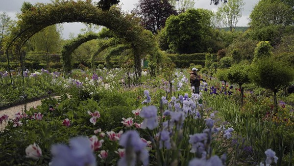 Monet memang merupakan pelukis impresionis yang terkenal dengan lukisan kebunnya.