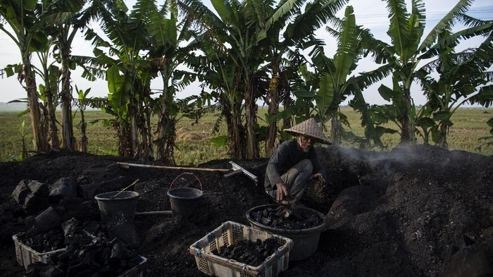 Aweng (67) menyelesaikan pembuatan arang kayu di Desa Kertawaluya, Kabupaten Karawang, Jawa Barat, Selasa (18/5/2021). Arang tersebut dijual Rp2.300 per Kg yang hasilnya untuk memenuhi kebutuhan sehari-hari. ANTARA FOTO/Sigid Kurniawan/foc.