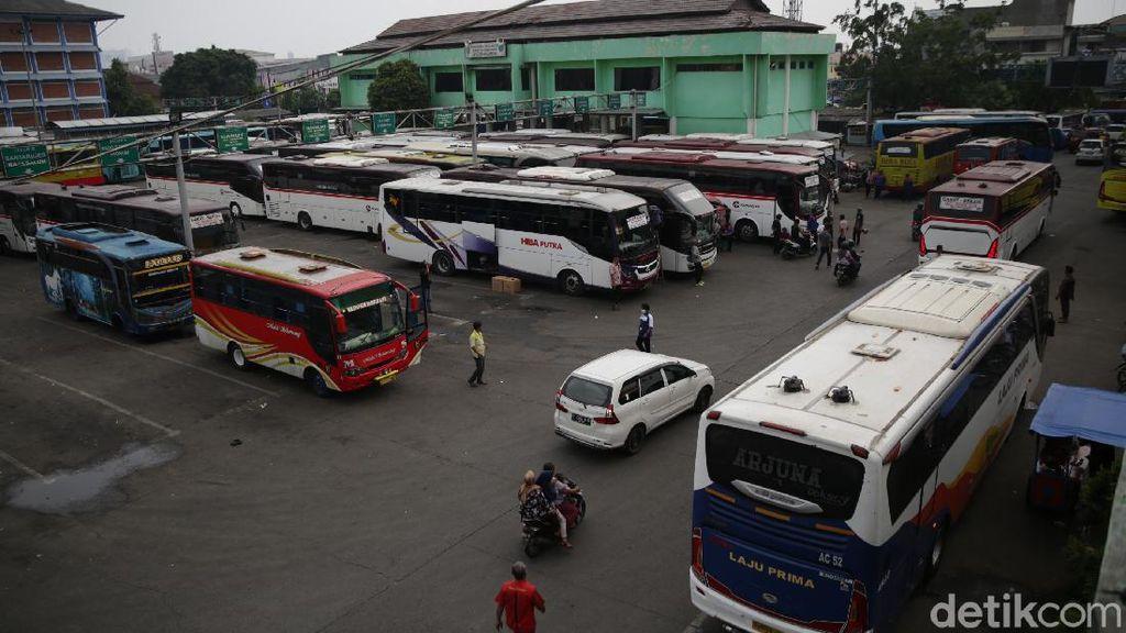 Pengusaha Bus saat PPKM Darurat: Banyak Bus Zombie Berkeliaran