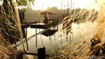 Cara Nelayan Kecil Pamulang Bergantung Hidup di Danau