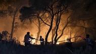 Kebakaran Hutan di Siprus Terburuk dalam Sejarah