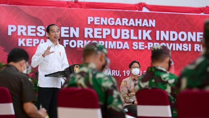 Presiden Jokowi di Riau