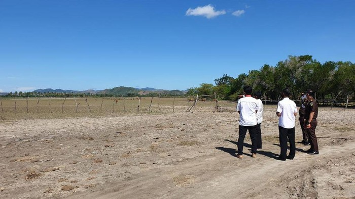 Kejaksaan sita tanah milik Benny Tjokrosaputro di NTB seluas 2,9 juta M2