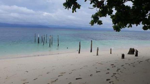 Miliki Taman Laut Terluas di Indonesia, Yuk Kenali Teluk Cenderawasih