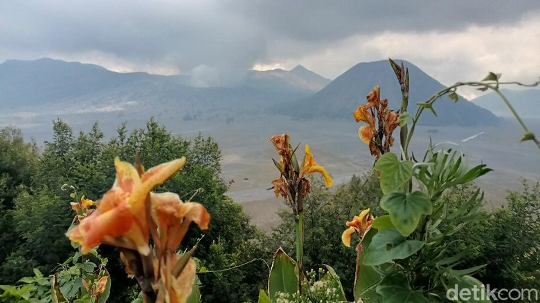 Ilustrasi Gunung Semeru.