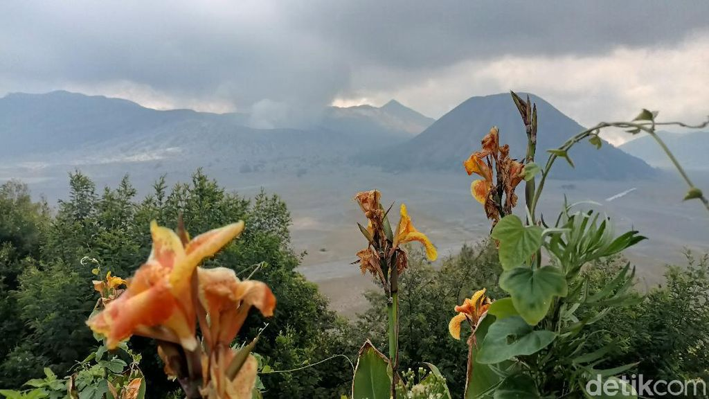 Wisata Gunung Bromo dan Pendakian Semeru Dibuka, Kuota Pengunjung 50 Persen