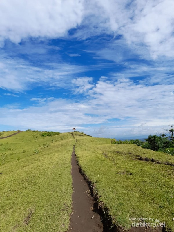 Bukit padang rumput hijau nan luas di Pantai Sayang Heulang
