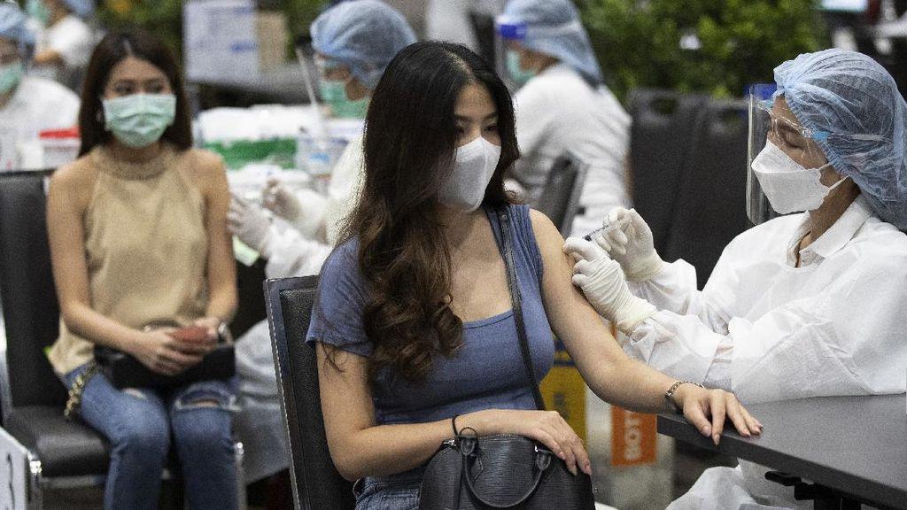 Gencar Vaksinasi COVID-19, Distrik di Thailand Tawarkan Hadiah Sapi