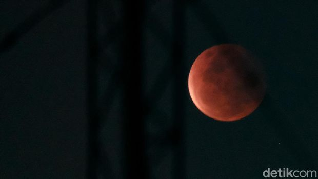 Gerhana bulan total, super blood moon, 26 Mei 2021. (Andhika Prasetia/detikcom)