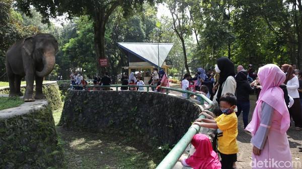 Taman Margasatwa Ragunan menjadi salah satu tempat wisata favorit bagi warga Jakarta. Di libur Waisak ini, tempat wisata itu ramai dikunjungi warga.