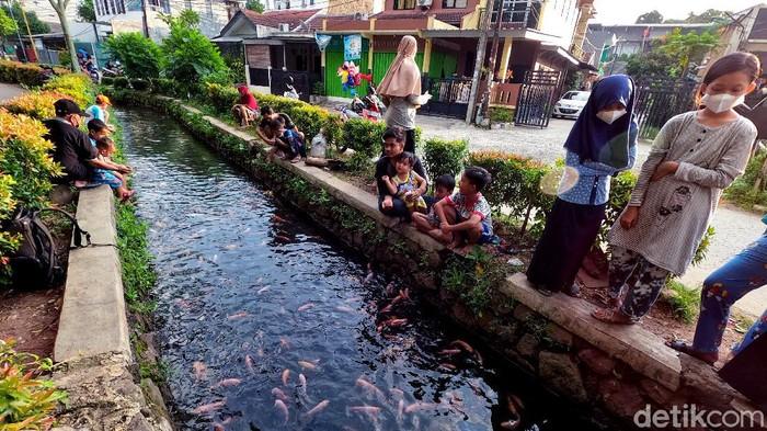 Saluran air di area perumahan Pamulang ini disulap menjadi kolam ikan. Kini, saluran air itu jadi tempat hiburan dadakan bagi warga sekitar. Berikut potretnya.