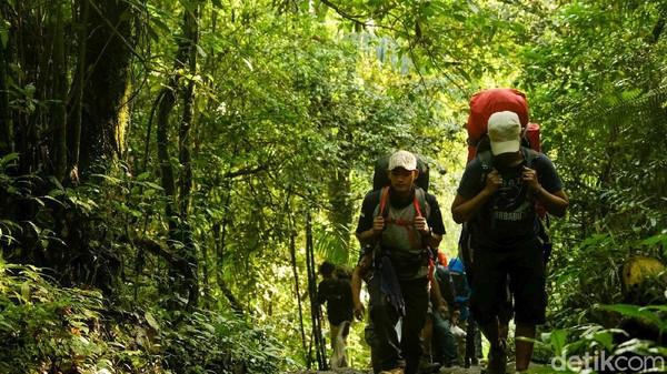 Selain Cibodas, jalur resmi pendakian Gunung Gede-Pangrango adalah via Gunung Putri dan Selabintana.