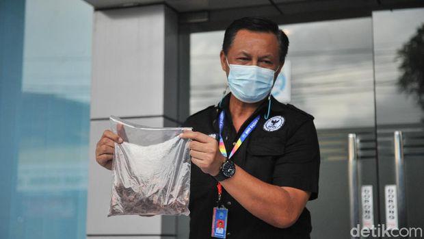 BNNP Bali menangkap WN Rusia pemilik narkotika jenis Dimethyltryptamine (DMT) (Sui S/detikcom)