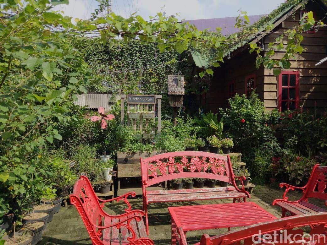 Mandira Garden: Menikmati Hasil Kebun yang Segar  di Tengah Kebun Asri