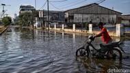 Luhut Sebut RI Sudah Rugi Rp 1.000 T Gara-gara Banjir Rob
