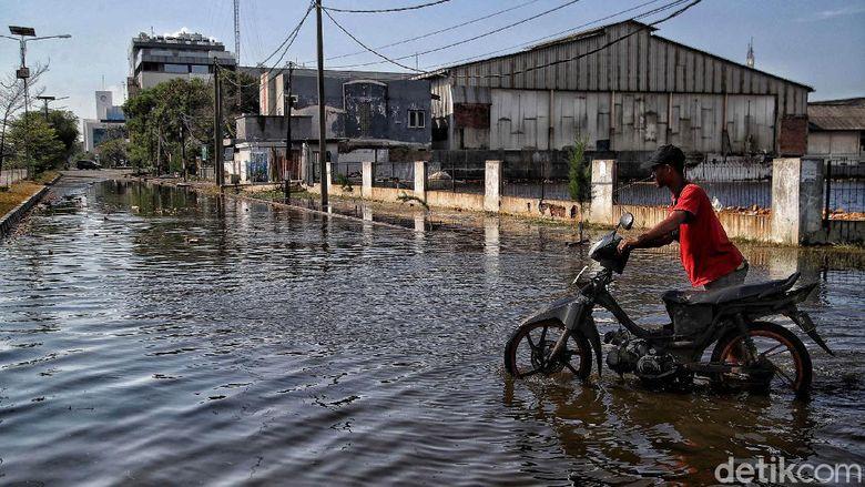 Banjir rob menerjang Pelabuhan Nizam Zachman, Muara Baru, Jakarta Utara, Jumat (28/5). Banjir rob tak menyurutkan semangat pekerja pelabuhan.