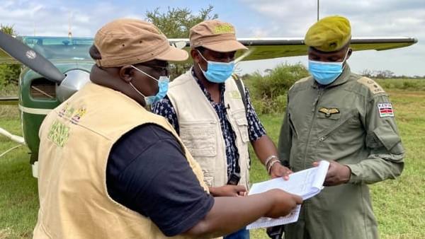 Di waktu pandemi, Kenya menyambut ledakan bayi, ada lebih dari 200 gajah. Menteri Pariwisata Kenya, Najib Balala menyebutnya sebagai hadiah Covid-19.