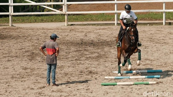 Terdapat berbagai tingkatan latihan berkuda di Pamulang Equestrian Centre. Murid di Pamulang Equestrian Centre sudah menyumbang prestasi di berbagai ajang berkuda.