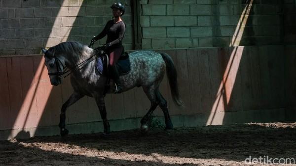 Berkuda juga akan memaksa pengendara mengendalikan keseimbangan serta koordinasi antar bagian tubuh.