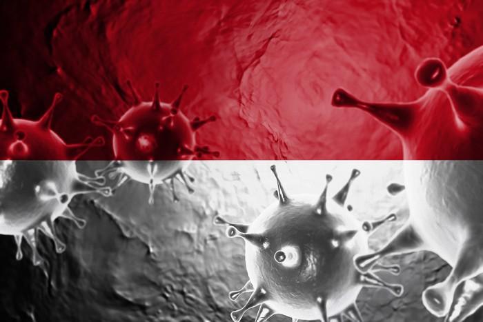 3D ILLUSTRATION VIRUS WITH Indonesia FLAG, CORONAVIRUS, Flu coronavirus floating, micro view, pandemic virus infection, asian flu.