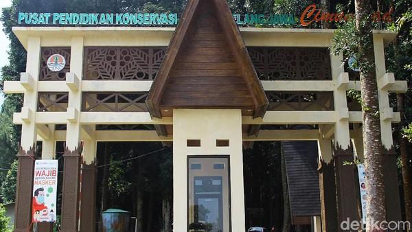 Taman Nasional Gunung Gede Pangrango (TNGGP) memiliki pusat pendidikan konservasi Elang Jawa di daerah Cimungkad, Sukabumi.
