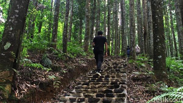 Balai Besar Taman Nasional Gunung Gede Pangrango (TNGGP) wilayah Cimungkad, Sukabumi sedang gencar-gencarnya melaksanakan upaya restorasi kawasan sehubungan dengan alih fungsi hutan produksi menjadi hutan konservasi.