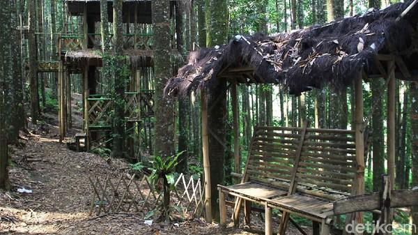 Bukan hanya wisata, di lokasi ini juga pengunjung bisa sambil belajar mengenal Elang Jawa, satwa endemik Pulau Jawa.