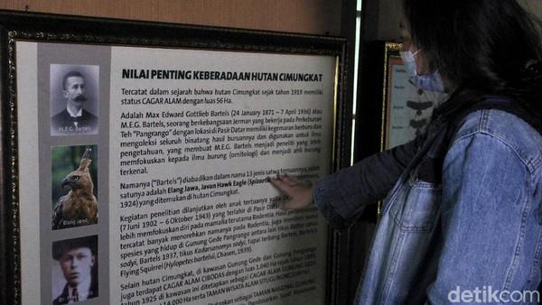 Berkat kegemarannya tersebut, beberapa nama burung, tikus dan tupai berhasil diidentifikasi berdasarkan koleksinya oleh karena itu nama Bartels (2)/Max (3) /Angeline (4) digunakan dalam nama latin satwa tersebut. Untuk menampung koleksinya tersebut MEG Bartels membangun sebuah museum koleksi di Pasir Datar, Sukabumi Taman Nasional Gunung Gede Pangrango.