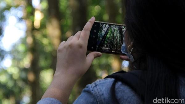 TNGGP merupakan taman nasional yang pertama di Indonesia bahkan di dunia yang mengadopsi metode penanaman ini dalam upaya merestorasi areal kritisnya. Dasar pertimbangannya adalah karena restorasi metode Miyawaki ini telah berhasil dilaksanakan dibeberapa negara seperti Malaysia, Brazil dan Kenya.