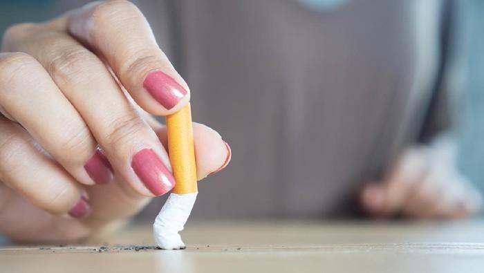 closeup woman hand destroying cigarette stop smoking concept