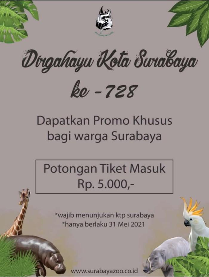 Ultah Surabaya, KBS Beri Diskon Rp 5 Ribu Bagi Pengunjung
