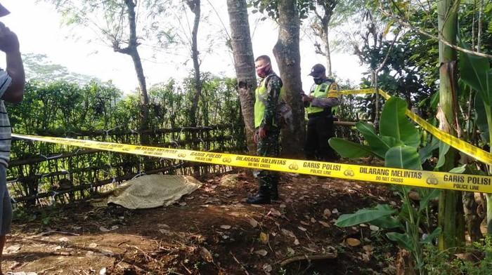 pemetik kelapa tewas terjatuh