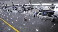 Gegara Penyu, Bandara Narita Jepang Tutup 12 Menit