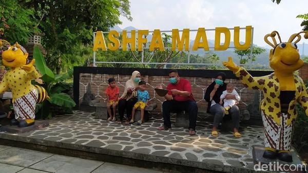 Inilah Ashfa Madu Borobudur, wisata edukasi tentang peternakan lebah madu yang lokasinya berada tidak jauh dari Candi Borobudur. Tepatnya di Desa Tanjungsari, Kecamatan Borobudur, Kabupaten Magelang. (Eko Susanto/detikTravel)