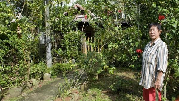 Salah satu alasan Kampong Lorong Buangkok tetap bertahan adalah seorang perempuan berusia 70 tahun, Sng Mui Hong. Dia bungsu dari empat bersaudara putri pedagang obat, Sng Teow Koon, yang membeli tanah di kampung itu pada 1959, sembilan tahun sebelum Singapura merdeka. Saat itu kampung tersebut masih berupa rawa-rawa. Kemudian, Koon menyewakan tanahnya kepada orang-orang Melayu dan China yang datang dan menetap di sana.(AFP/SIMIN WANG)