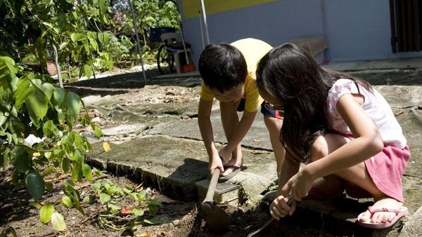 Berada di tengah hutan eton, Kampong Lorong Buangkok menyuguhkan suasana Singapura tempo dulu. Di sini masih ada tumbuhan ketapang dan kabel listrik yang menggantung. Di area Singapura lain, jaringan listrik dipasang di bawah tanah, dan masih ada ayam berkeliaran di halaman. Harga sewa rumahnya pun sangat murah dibandingkan flat yang menjadi tempat tinggal 90 persen warga Singapura, sekitar Rp 65 ribu sampai Rp 430 ribu per bulan.(AFP/SIMIN WANG)