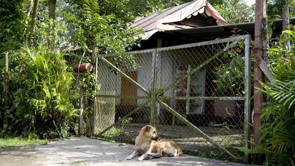 Di Kampong lorong Buangkok cuma ada 25 rumah. Salah satu penduduk setempat, Nassim, berharap pemerintah tidak mengubah kebijakan. Sebab, Kampong Lorong Buangkok merupakan salah satu jejak masa lalu Singapura yang patut diketahui anak cucu. (SIMIN WANG)