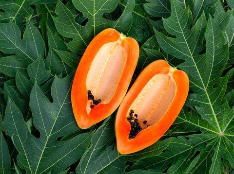 7 avantages des feuilles de papaye pour la santé, une digestion saine pour la peau