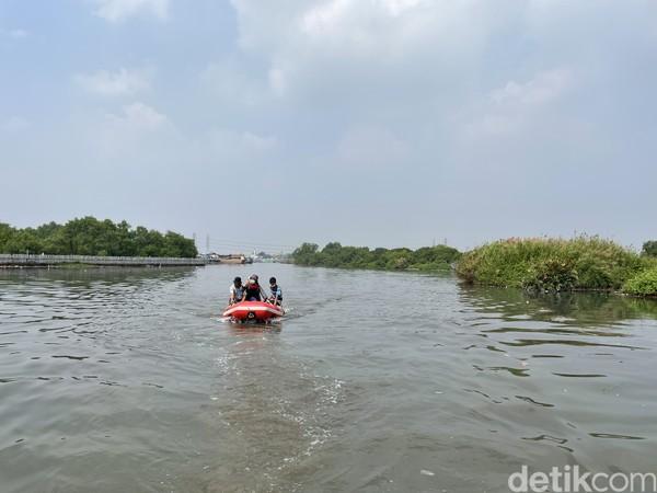 Di ujung Suaka Margasatwa Muara Angke ada kawasan Hutan Lindung Angke Kapuk di bawah Dinas Pertamanan dan Hutan Kota DKI Jakarta. Destinasi ini seperti tak pernah dikunjungi manusia.