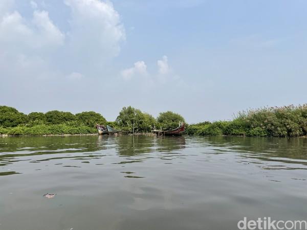 Jadi di Suaka Margasatwa Muara Angke ini ada sekitar 122 spesies burung dan 26 jenis di antaranya adalah burung air. 19 Jenis di antaranya dilindungi dan 16 di antaranya adalah burung migran.