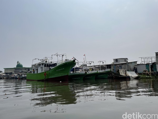 Pengaruh aktivitas manusia ke lingkungan Suaka Margasatwa Muara Angke begitu terasa. Ada banjir dan permukiman liar yang sangat mengganggu di sana.