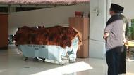 Dokter RSU Soetomo yang Biasa Tangani Kembar Siam Meninggal Dunia