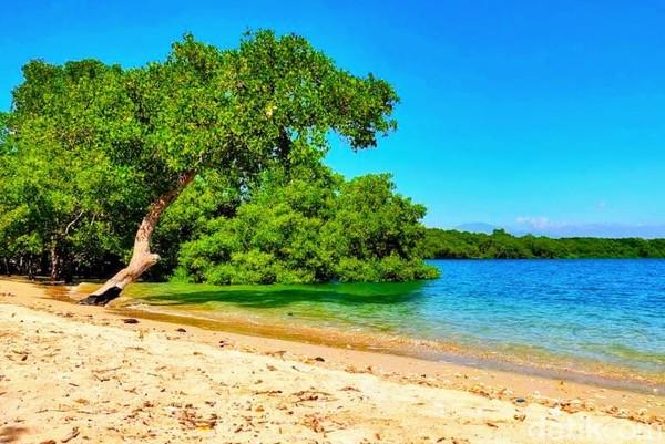 Pantai Sejile merupakan semenanjung atau daratan yang menjorok ke laut. Lalu di bagian lain, garis pantainya berlekuk hingga nyaris setengah lingkaran, lalu berbentuk teluk. Sehingga, terciptalah perpaduan yang elok dan eksotis antara semenanjung berpadu dengan teluk.