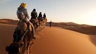 Rahasia Kuno Gurun Sahara dan Biografi Nabi Muhammad di Daun Emas