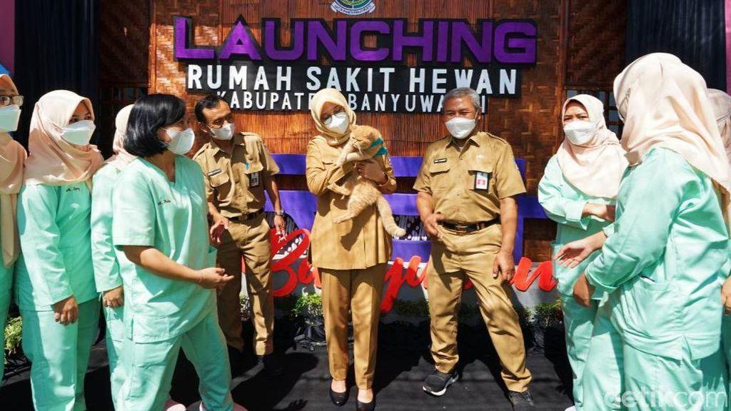 Banyuwangi Kini Punya Rumah Sakit Khusus Hewan, Fasilitas UGD Hingga Rawat Inap
