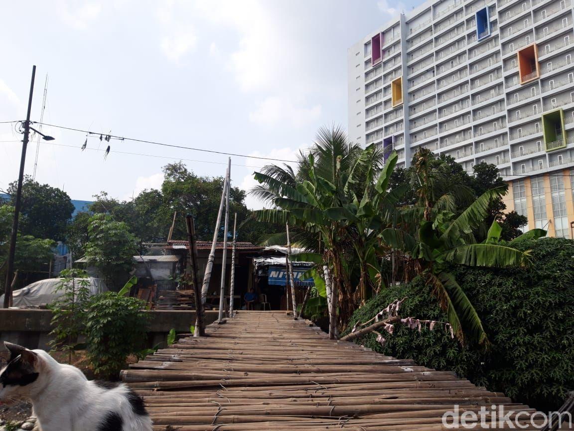 Jembatan penyeberangan orang (JPO) bambu reyot di Kampung Rawa Barat dan Kamung Rawa Timur, Kebon Jeruk, Jakarta Barat, 8 Juni 2021. (Rakha Ariyanto Darmawan/detikcom)
