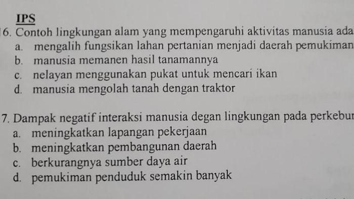 Soal ujian SD di Kampar, Riau, diprotes karena diduga ada kampanye negatif soal sawit (Dok Istimewa)
