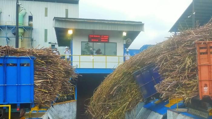 Anak usaha PTPN XII genjot produksi gula 61 ribu ton